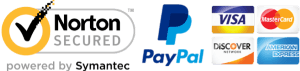 Pay with PayPal, Visa, MasterCard, Discovery, American Express